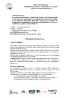 INSTRUCCIONES TÉCNICAS C.CyL Abs-T.C.V